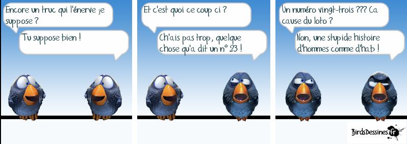 http://i32.servimg.com/u/f32/09/02/08/06/oiseau10.png