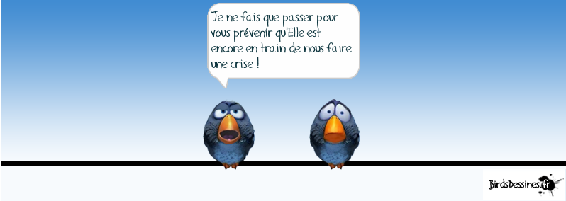 http://i32.servimg.com/u/f32/09/02/08/06/oiseau14.png