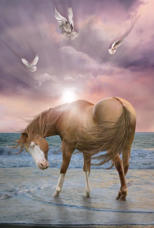 chevaux dans chevaux 19490310