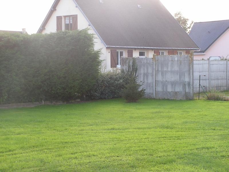 Conseils pour planter clematites au jardin forum de for Conseil plantation jardin