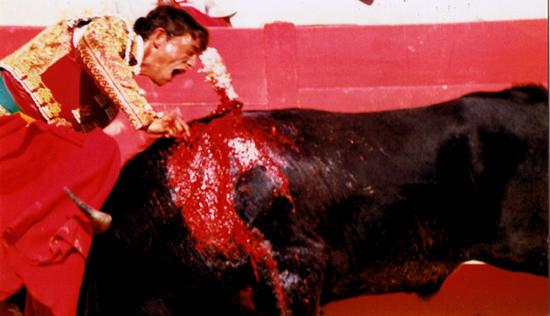 La faena peut durer plus ou moins longtemps. C'est le torero qui décide. Maintenant le silence se fait. Le matador se prépare pour l'estocade (probablement le moment le plus risqué pour lui).