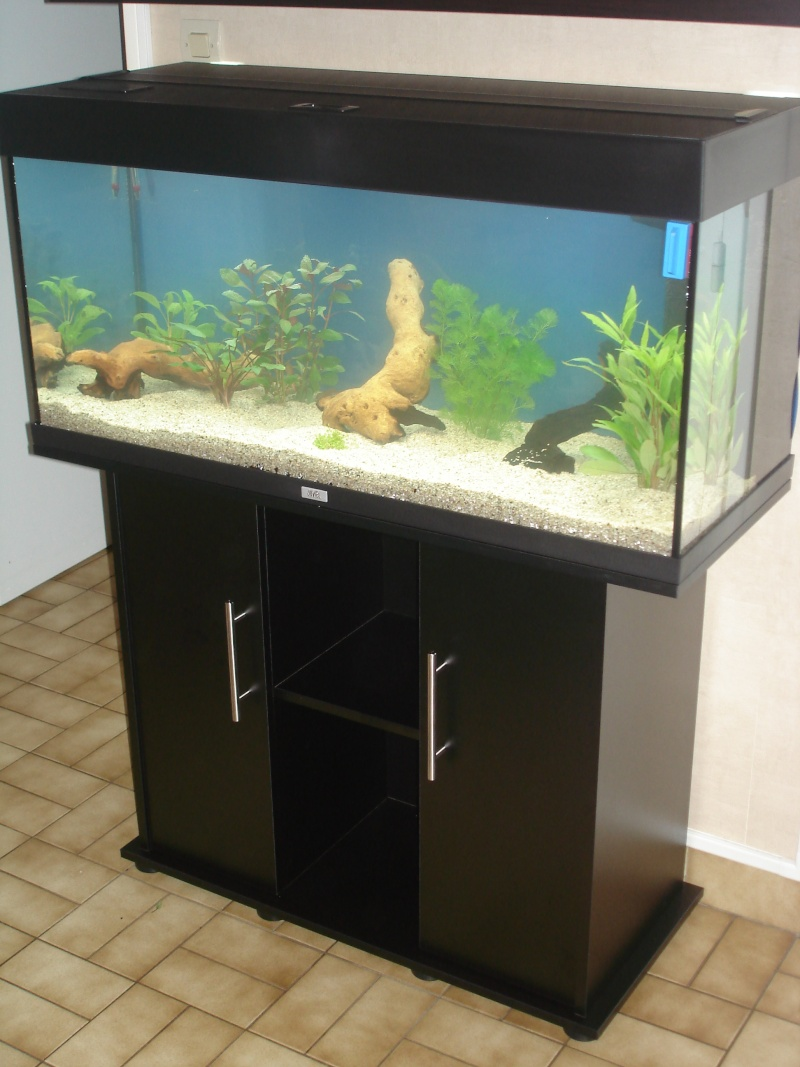 Voici mon juwel rio 180l pr sentation des bacs forum for Vendeur aquarium