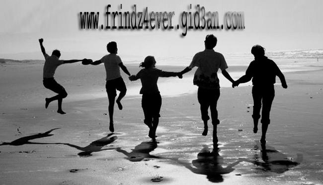 frindz4ever.com