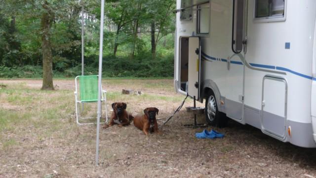 amenagement soute camping car adria. Black Bedroom Furniture Sets. Home Design Ideas