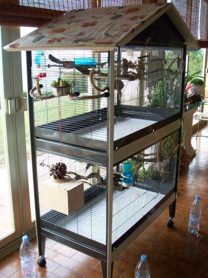 la famille s 39 agrandit cages xl et voli res d 39 int rieur. Black Bedroom Furniture Sets. Home Design Ideas