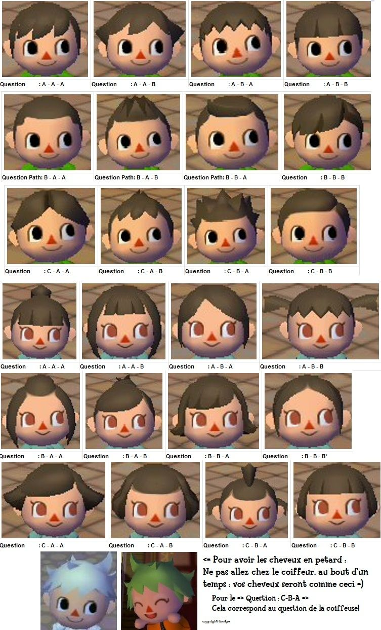 Coupe de cheveux animal crossing ww carol rountree blog - Animal crossing wild world hair salon ...