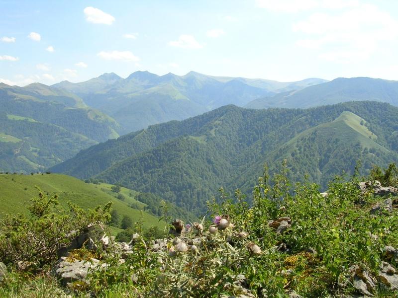Site de rencontre dans le sud de la france