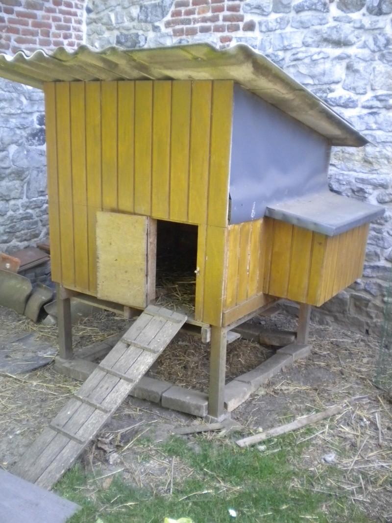 Poulailler 2 poules - Forum faire construire ...