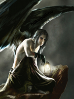 The Dark Angel Forum
