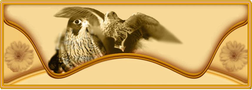 منتـــــديات الصقــــــارة: http://alskara.forumegypt.net/