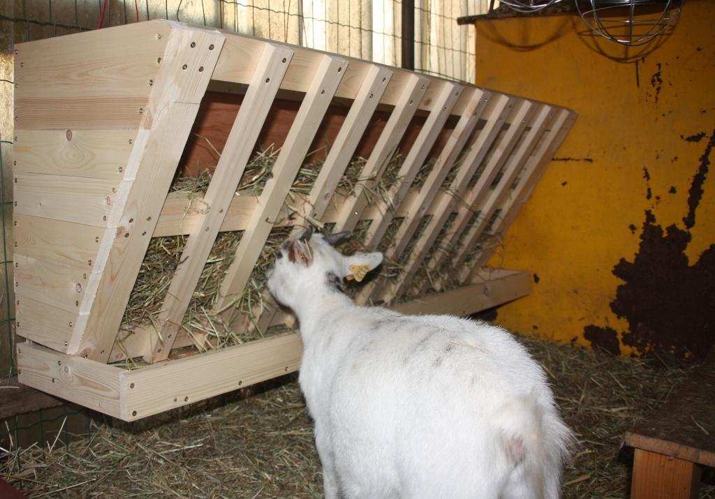 Construction en cours future cabane de pop corn - Fabriquer une chevre pour couper le bois ...