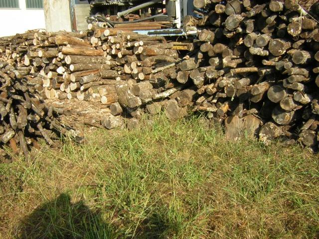 Prezzi legna da ardere pagina 7 for Legna da ardere prezzi