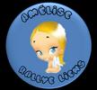 http://i32.servimg.com/u/f32/17/12/84/52/bouton14.png