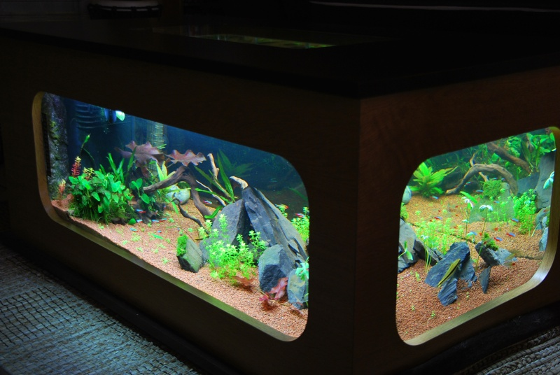 Le bon coin table basse aquarium - Table salon aquarium ...