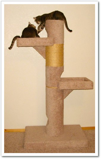 modele et plan arbre a chat. Black Bedroom Furniture Sets. Home Design Ideas