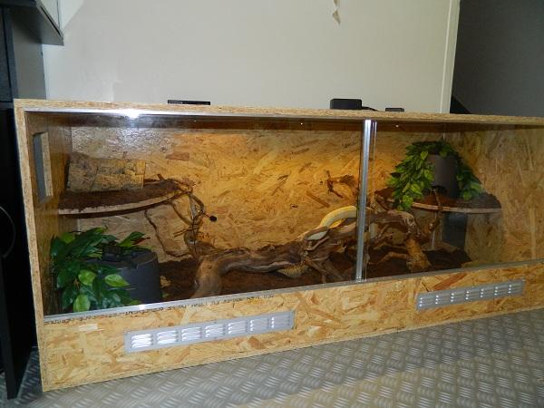 bricolage du new terrarium. Black Bedroom Furniture Sets. Home Design Ideas